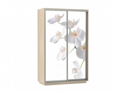 Шкаф-купе Фото Дуо Орхидея ясень шимо светлый